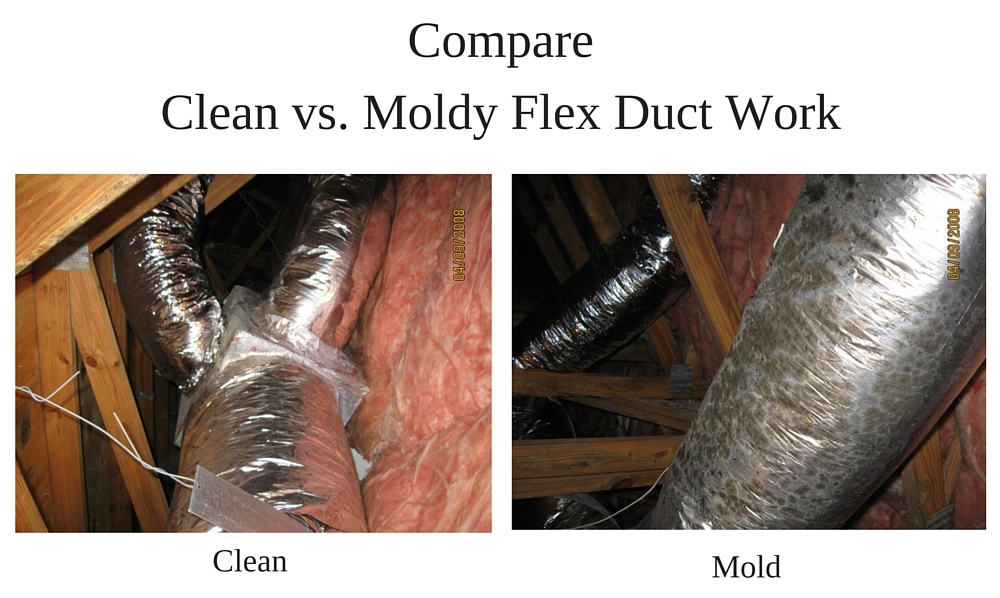 moldy-ductwork