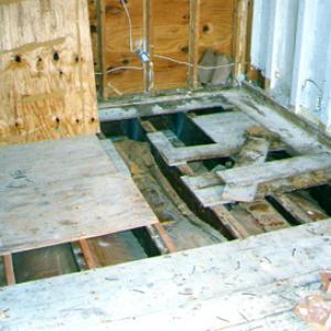 mold on wood floor