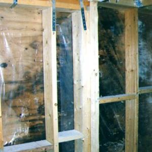 white-mold-in-wall